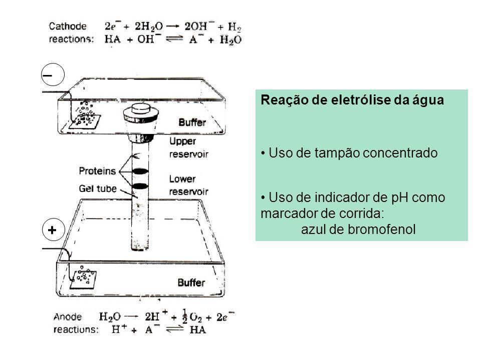 _ + Reação de eletrólise da água Uso de tampão concentrado