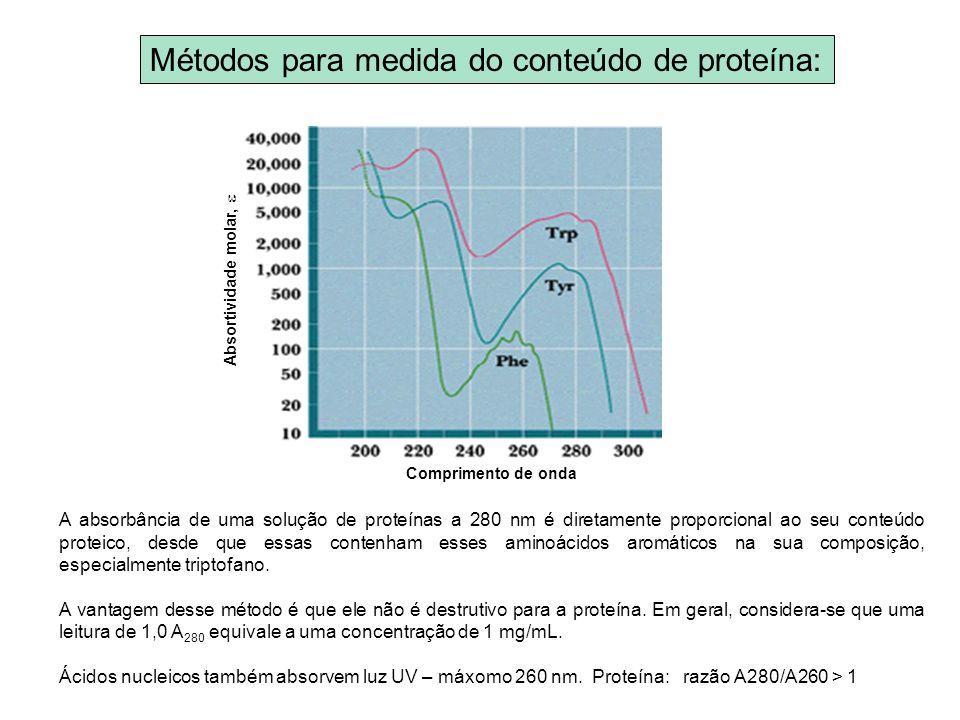 Métodos para medida do conteúdo de proteína:
