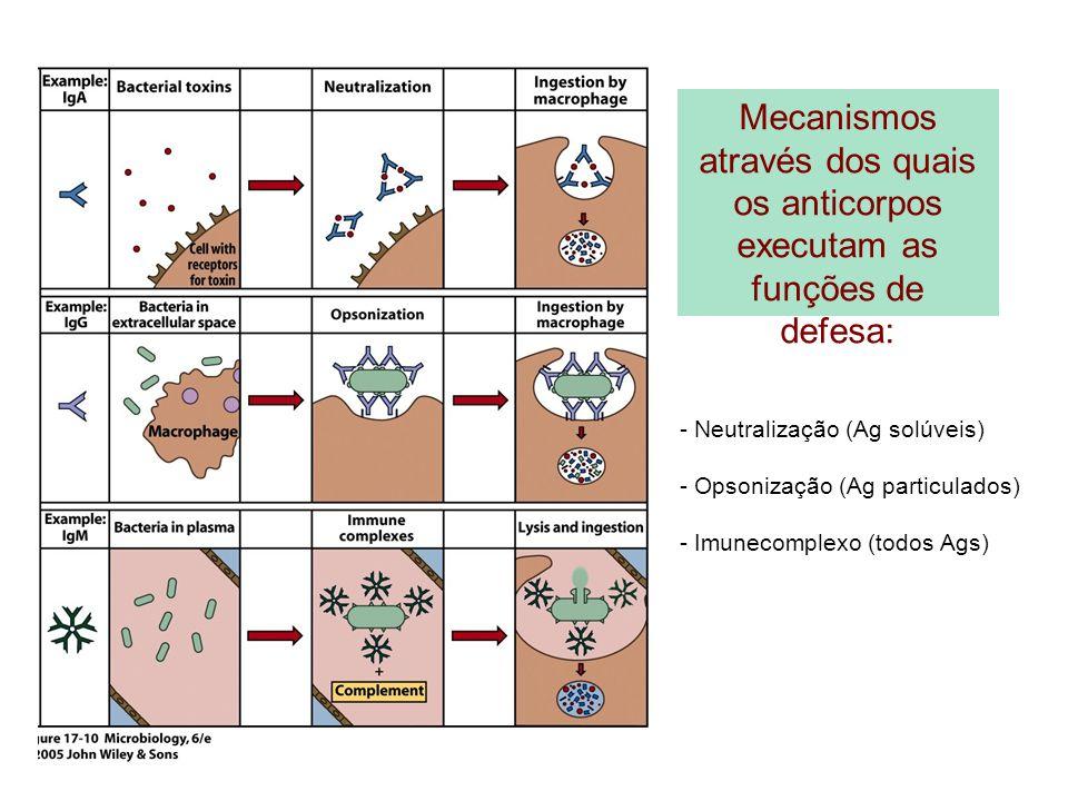 Mecanismos através dos quais os anticorpos executam as funções de defesa: