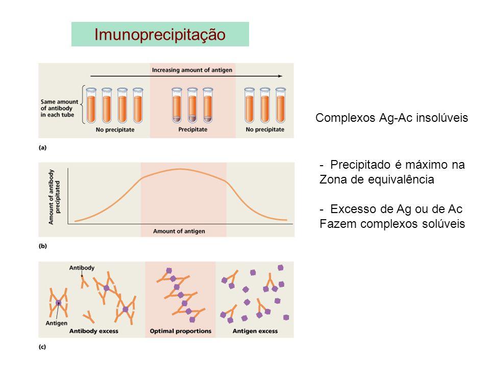 Imunoprecipitação Complexos Ag-Ac insolúveis - Precipitado é máximo na