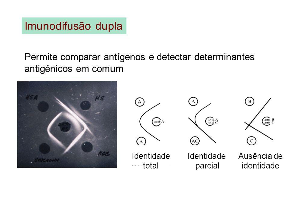 Imunodifusão dupla Permite comparar antígenos e detectar determinantes antigênicos em comum. Identidade.