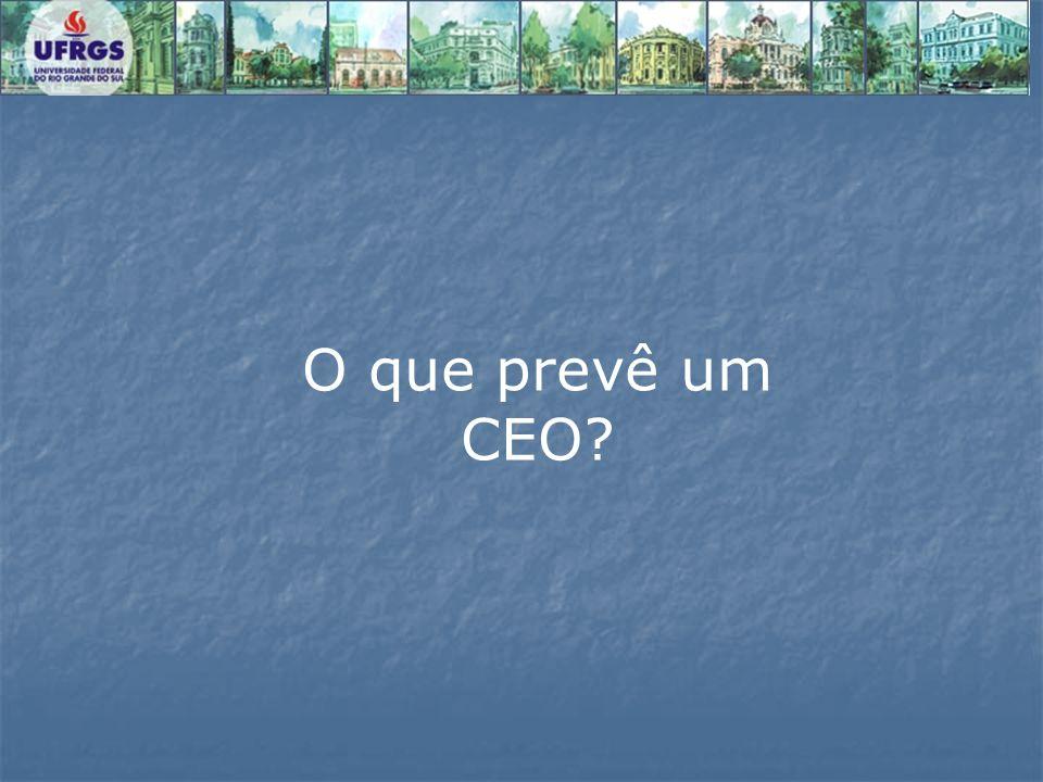O que prevê um CEO