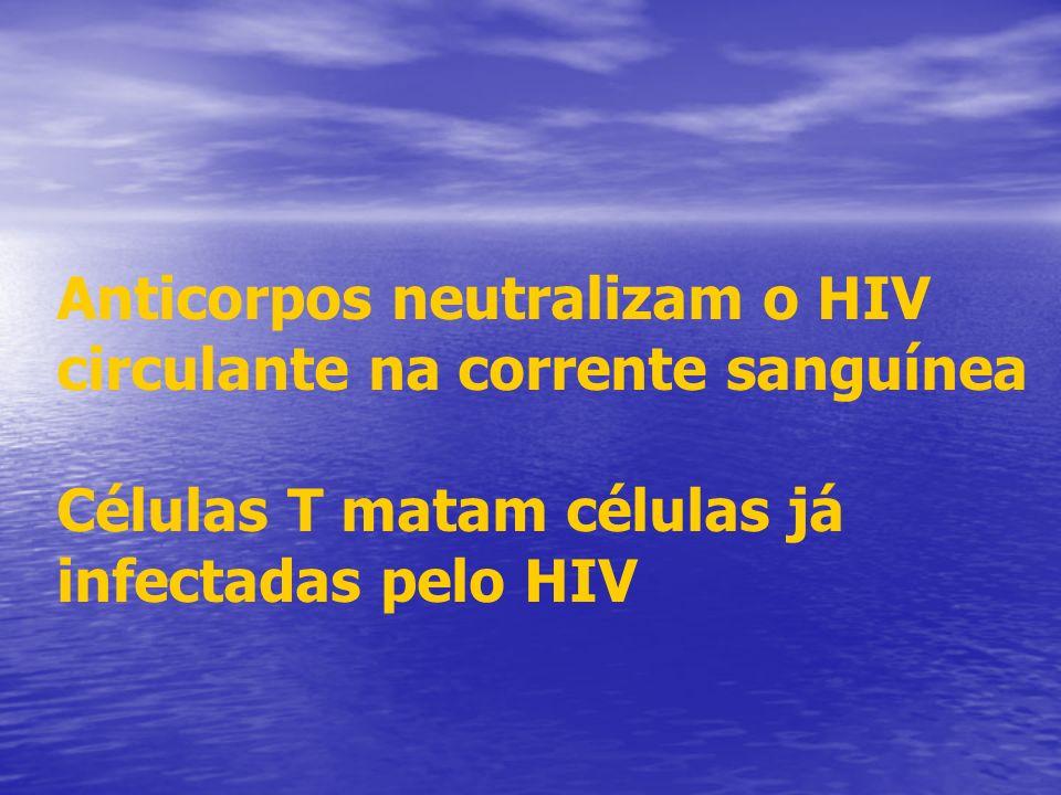 Anticorpos neutralizam o HIV circulante na corrente sanguínea