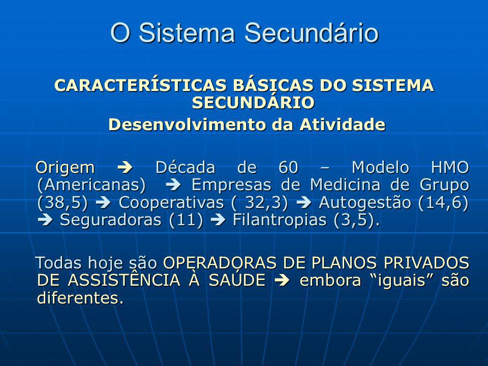 CARACTERÍSTICAS BÁSICAS DO SISTEMA SECUNDÁRIO