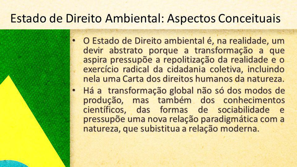 Estado de Direito Ambiental: Aspectos Conceituais
