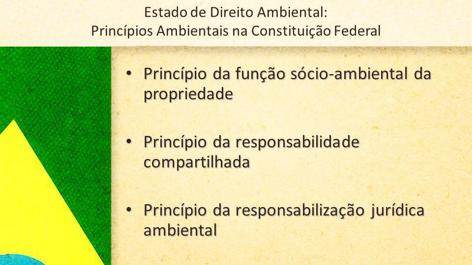 Princípio da função sócio-ambiental da propriedade