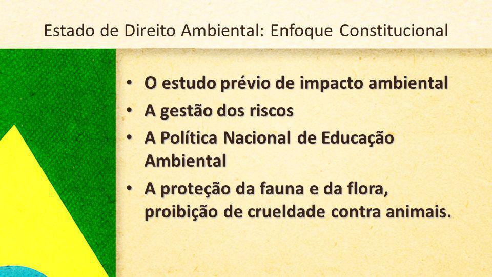 Estado de Direito Ambiental: Enfoque Constitucional