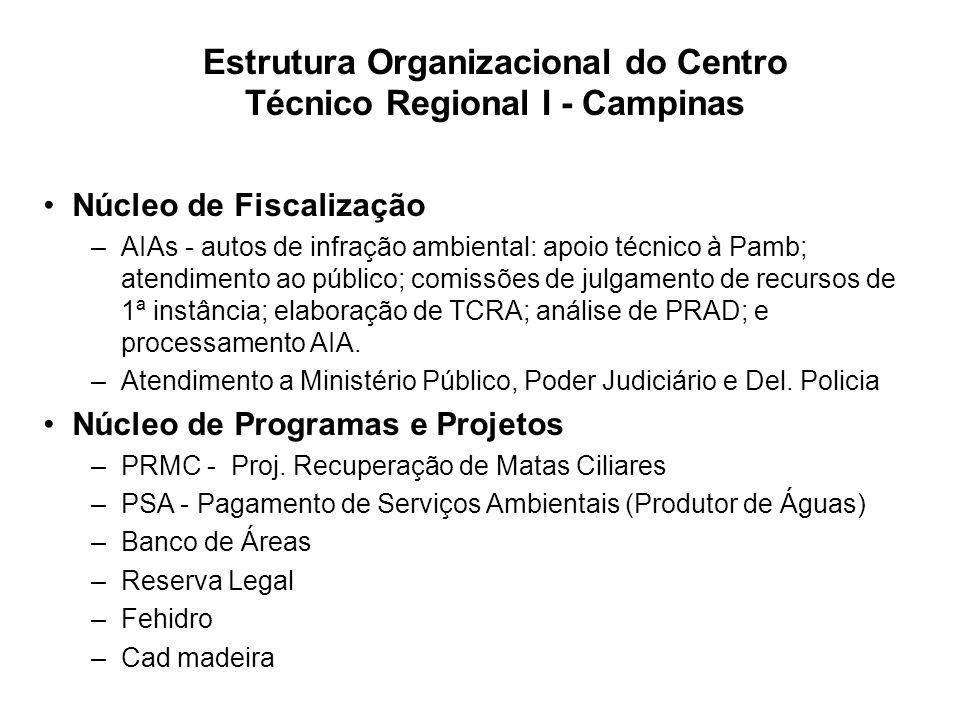 Estrutura Organizacional do Centro Técnico Regional I - Campinas