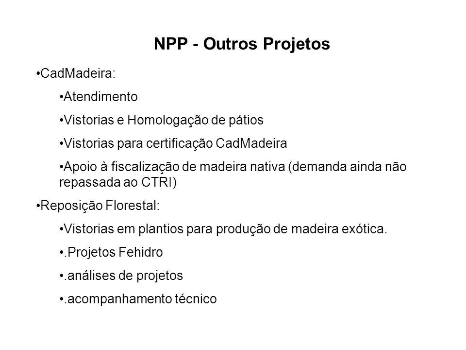 NPP - Outros Projetos CadMadeira: Atendimento