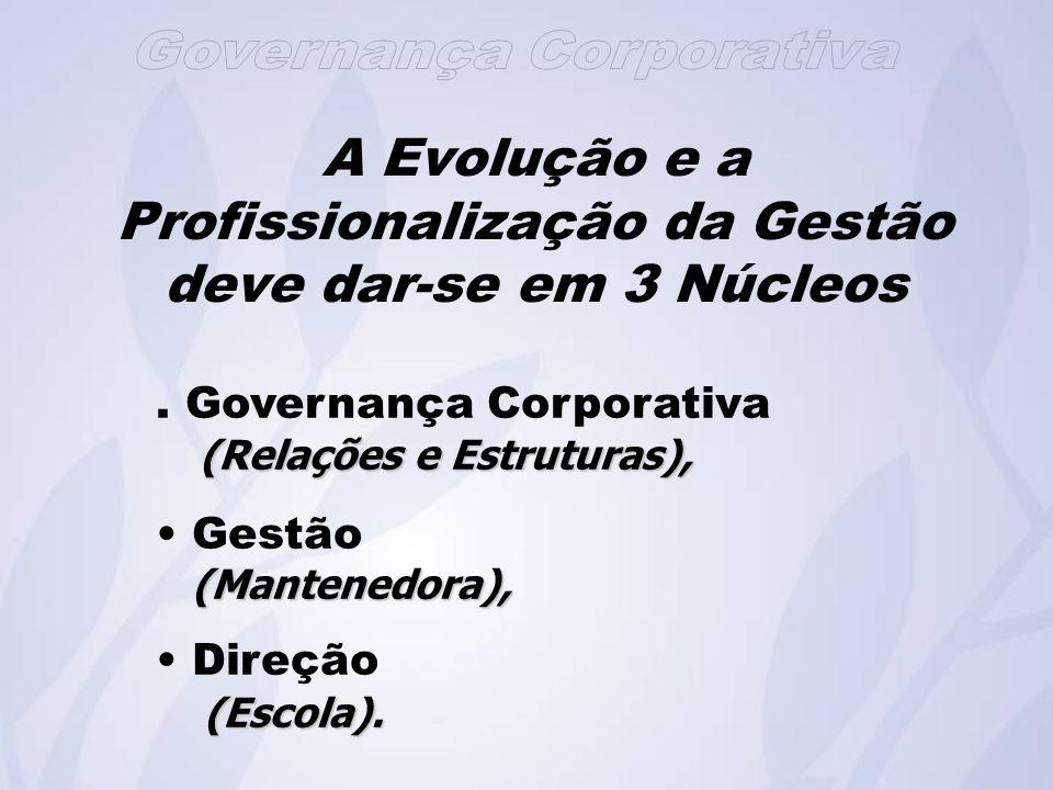 A Evolução e a Profissionalização da Gestão deve dar-se em 3 Núcleos
