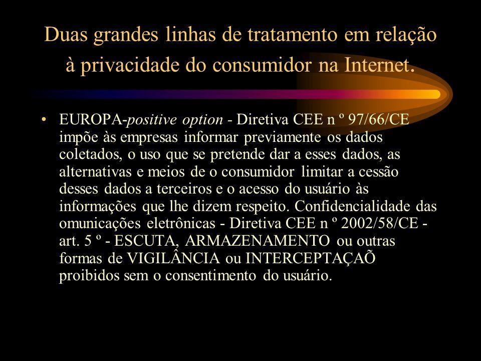 Duas grandes linhas de tratamento em relação à privacidade do consumidor na Internet.
