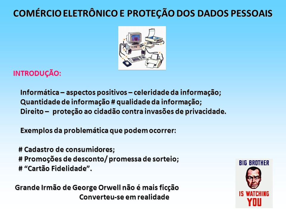 COMÉRCIO ELETRÔNICO E PROTEÇÃO DOS DADOS PESSOAIS