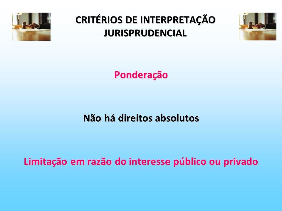 CRITÉRIOS DE INTERPRETAÇÃO JURISPRUDENCIAL