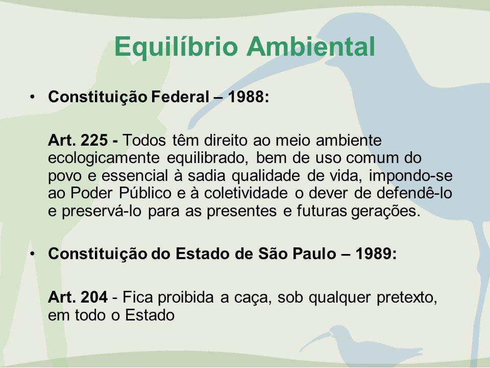 Equilíbrio Ambiental Constituição Federal – 1988: