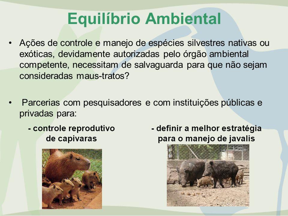 Equilíbrio Ambiental