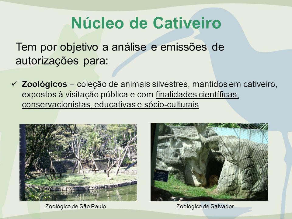 Núcleo de Cativeiro Tem por objetivo a análise e emissões de autorizações para: