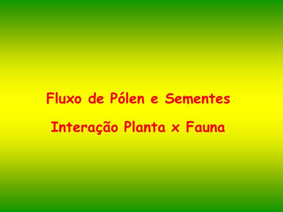 Fluxo de Pólen e Sementes Interação Planta x Fauna