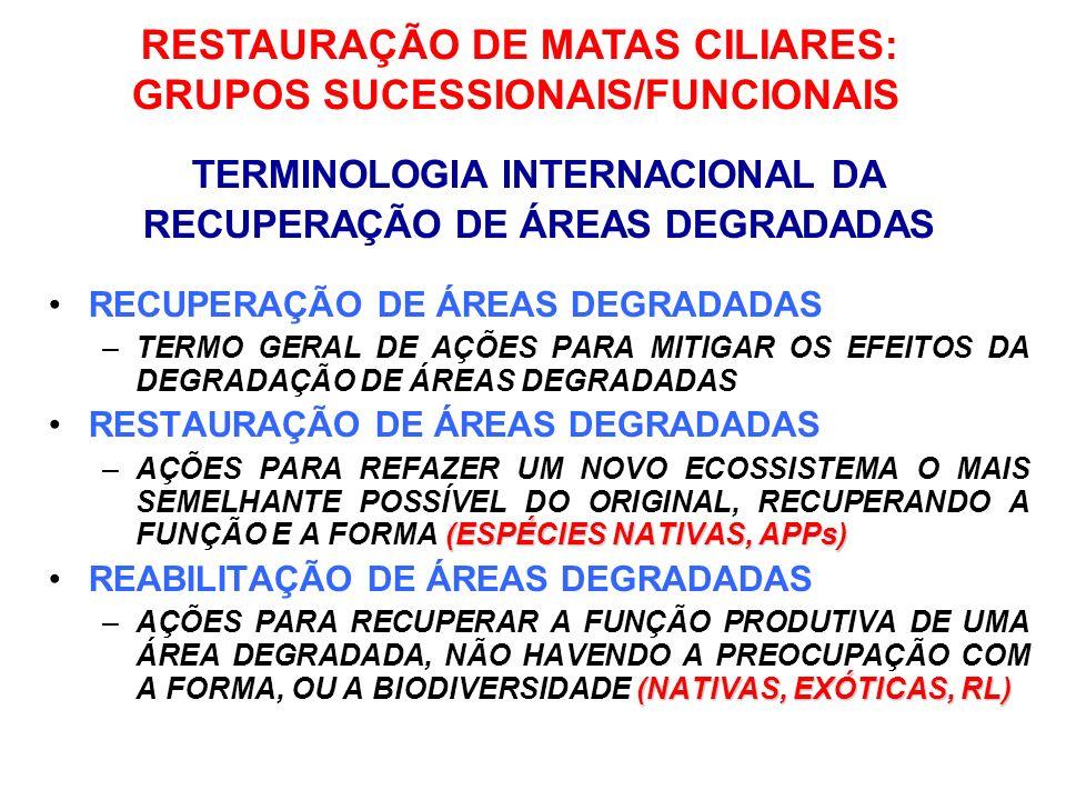 GRUPOS SUCESSIONAIS/FUNCIONAIS