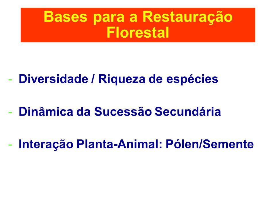 Bases para a Restauração Florestal