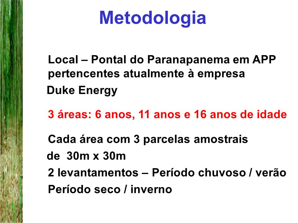Metodologia Local – Pontal do Paranapanema em APP pertencentes atualmente à empresa. Duke Energy.