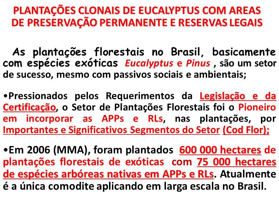 PLANTAÇÕES CLONAIS DE EUCALYPTUS COM AREAS DE PRESERVAÇÃO PERMANENTE E RESERVAS LEGAIS