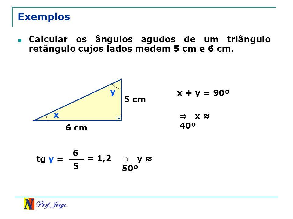 Exemplos Calcular os ângulos agudos de um triângulo retângulo cujos lados medem 5 cm e 6 cm. y. x + y = 90º.