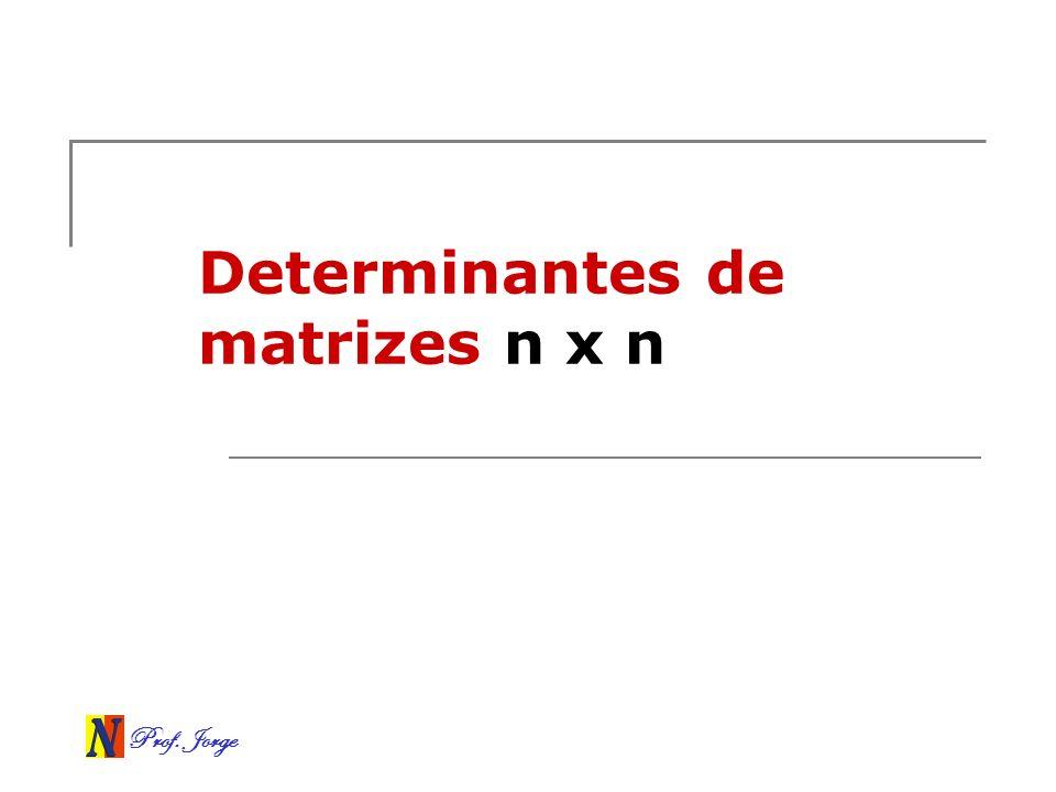 Determinantes de matrizes n x n