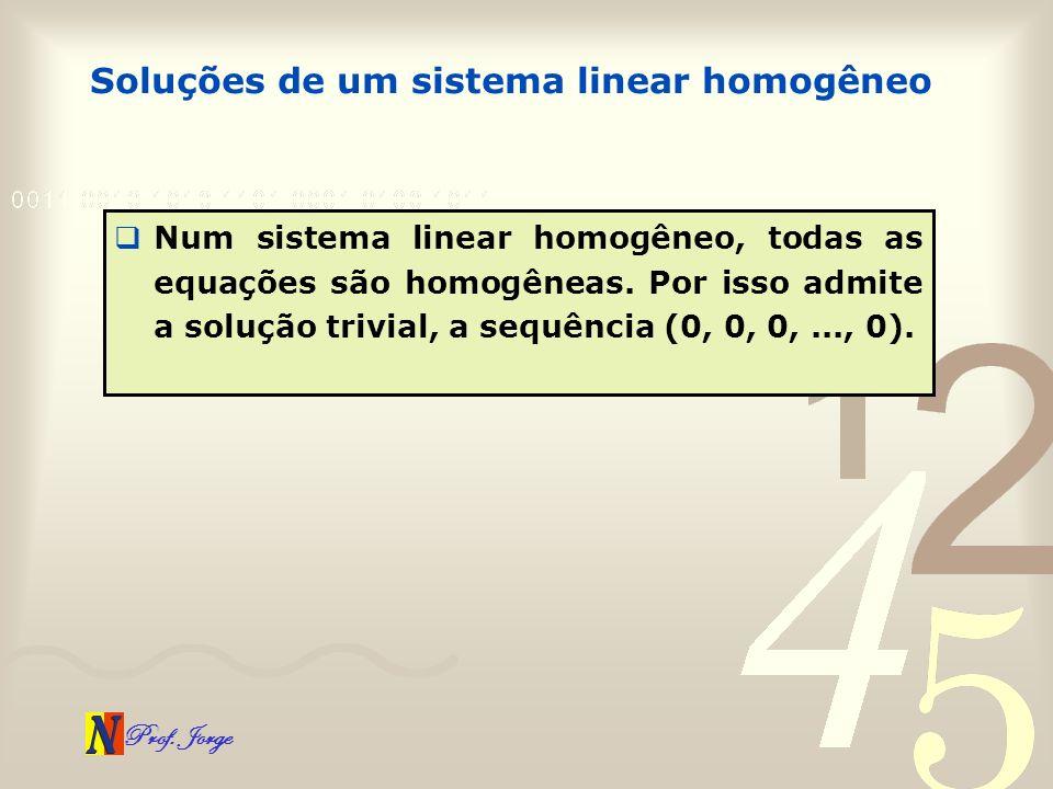Soluções de um sistema linear homogêneo