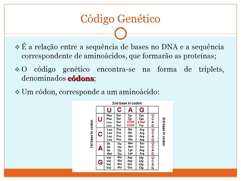 Código Genético É a relação entre a sequência de bases no DNA e a sequência correspondente de aminoácidos, que formarão as proteínas;
