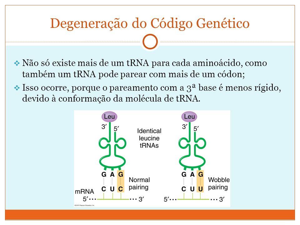 Degeneração do Código Genético