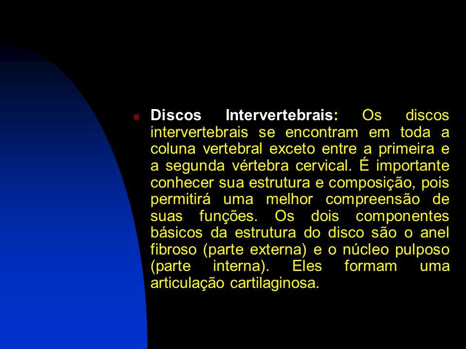 Discos Intervertebrais: Os discos intervertebrais se encontram em toda a coluna vertebral exceto entre a primeira e a segunda vértebra cervical.