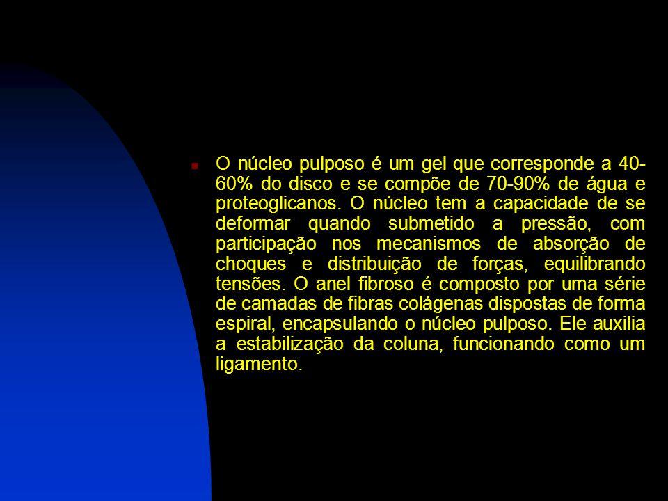O núcleo pulposo é um gel que corresponde a 40-60% do disco e se compõe de 70-90% de água e proteoglicanos.