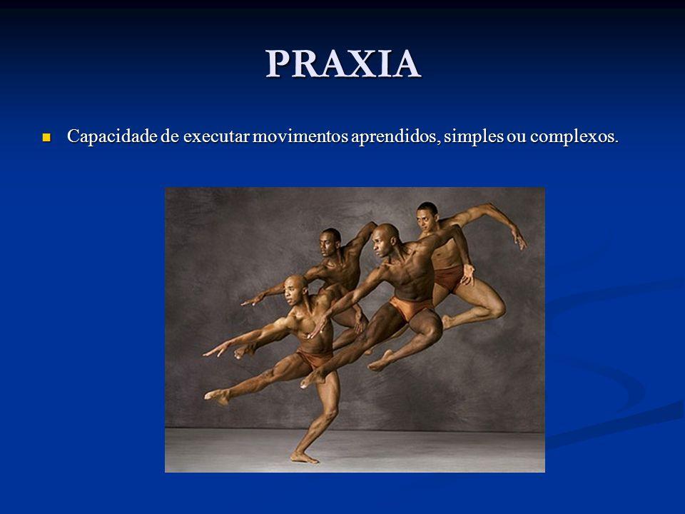 PRAXIA Capacidade de executar movimentos aprendidos, simples ou complexos.