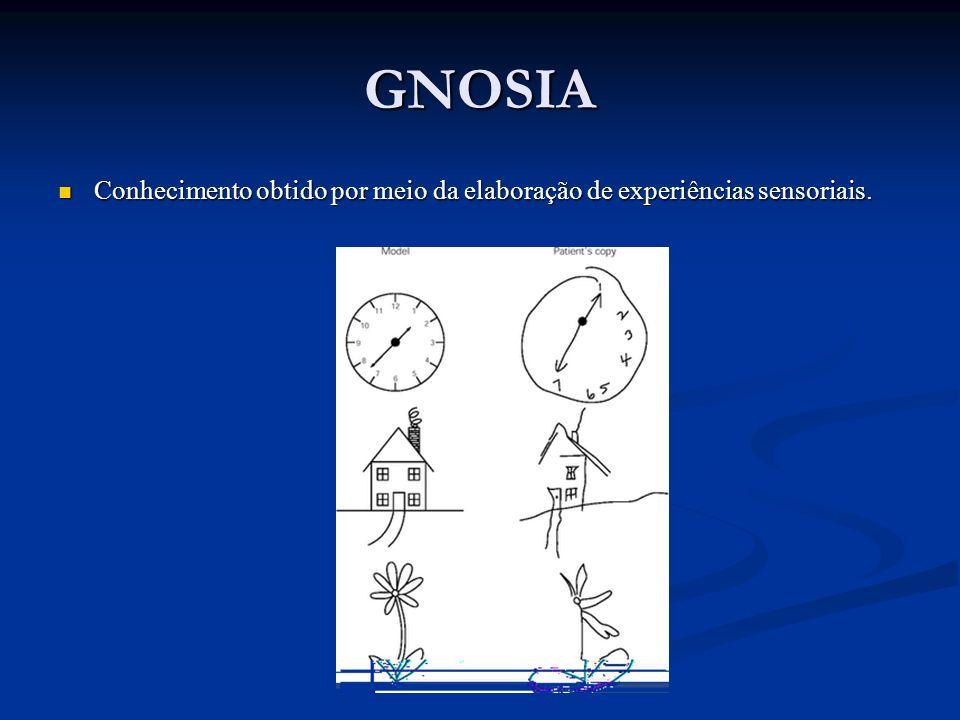 GNOSIA Conhecimento obtido por meio da elaboração de experiências sensoriais.