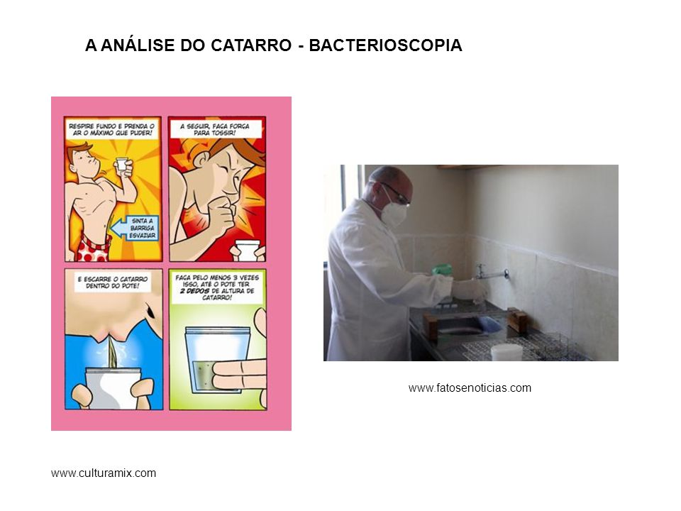 A ANÁLISE DO CATARRO - BACTERIOSCOPIA
