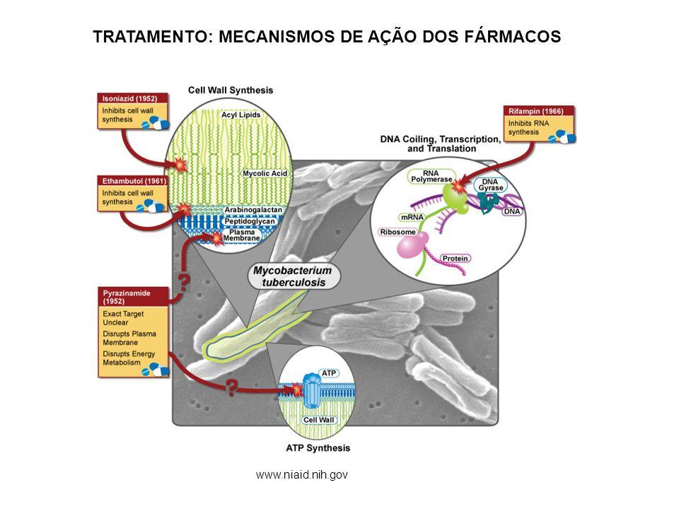 TRATAMENTO: MECANISMOS DE AÇÃO DOS FÁRMACOS