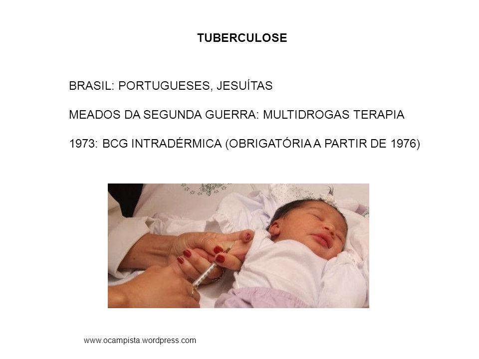 BRASIL: PORTUGUESES, JESUÍTAS