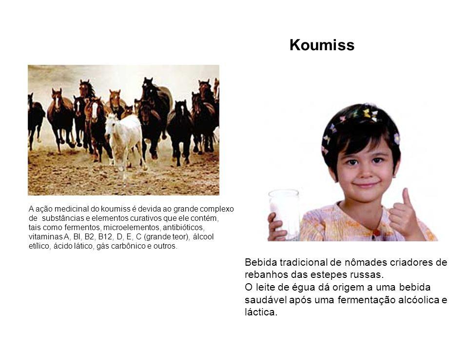 Koumiss A ação medicinal do koumiss é devida ao grande complexo. de substâncias e elementos curativos que ele contém,