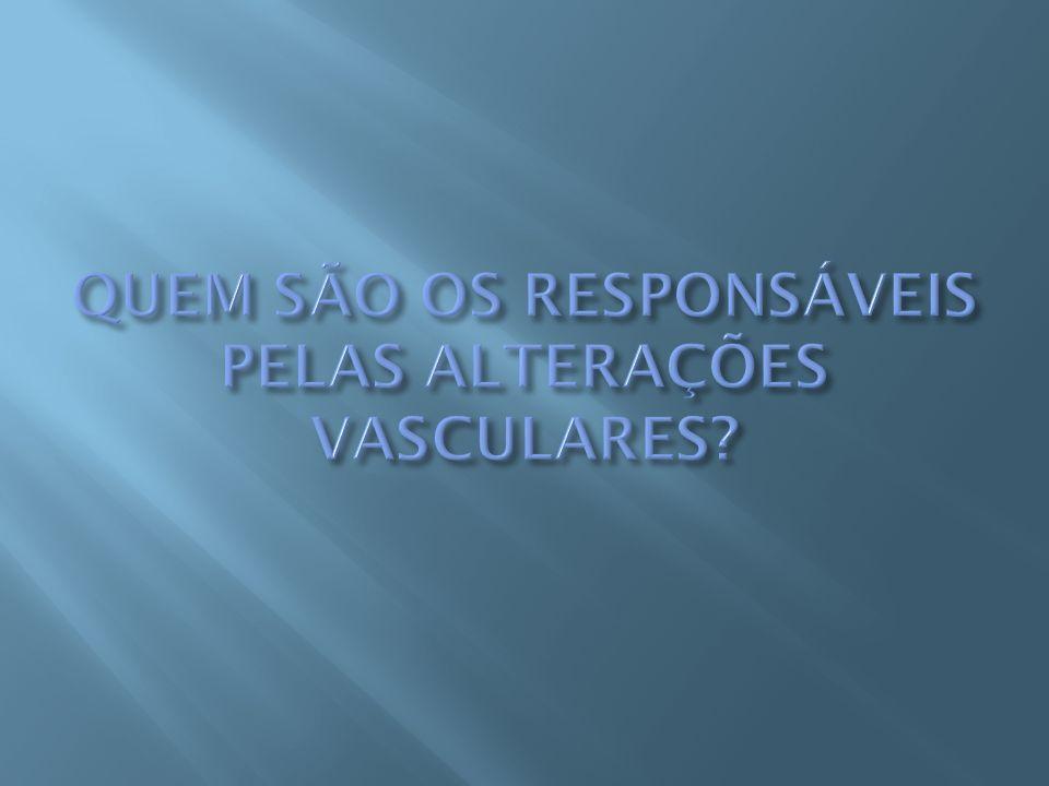 QUEM SÃO OS RESPONSÁVEIS PELAS ALTERAÇÕES VASCULARES