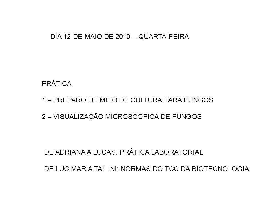 DIA 12 DE MAIO DE 2010 – QUARTA-FEIRA