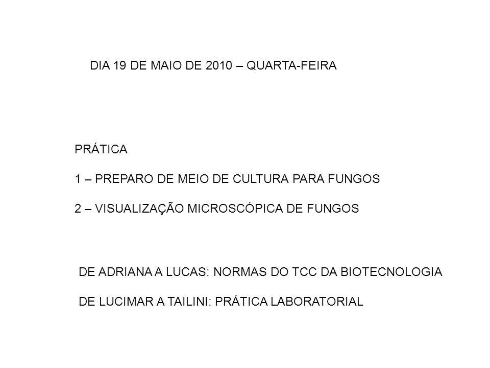 DIA 19 DE MAIO DE 2010 – QUARTA-FEIRA