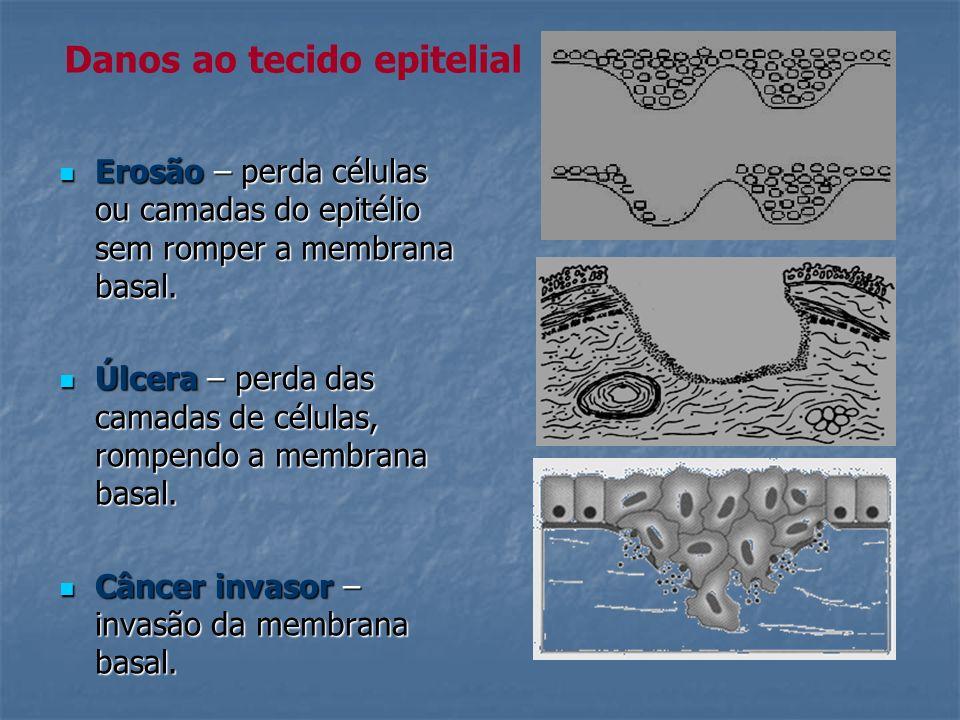 Danos ao tecido epitelial