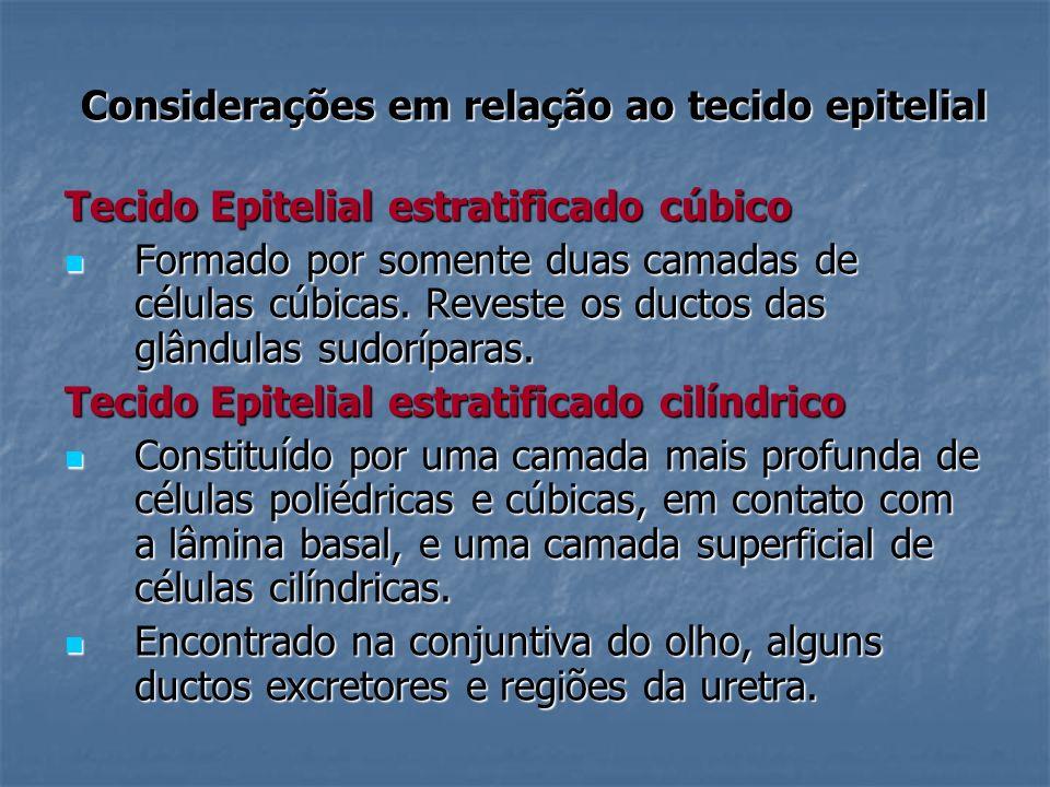 Considerações em relação ao tecido epitelial