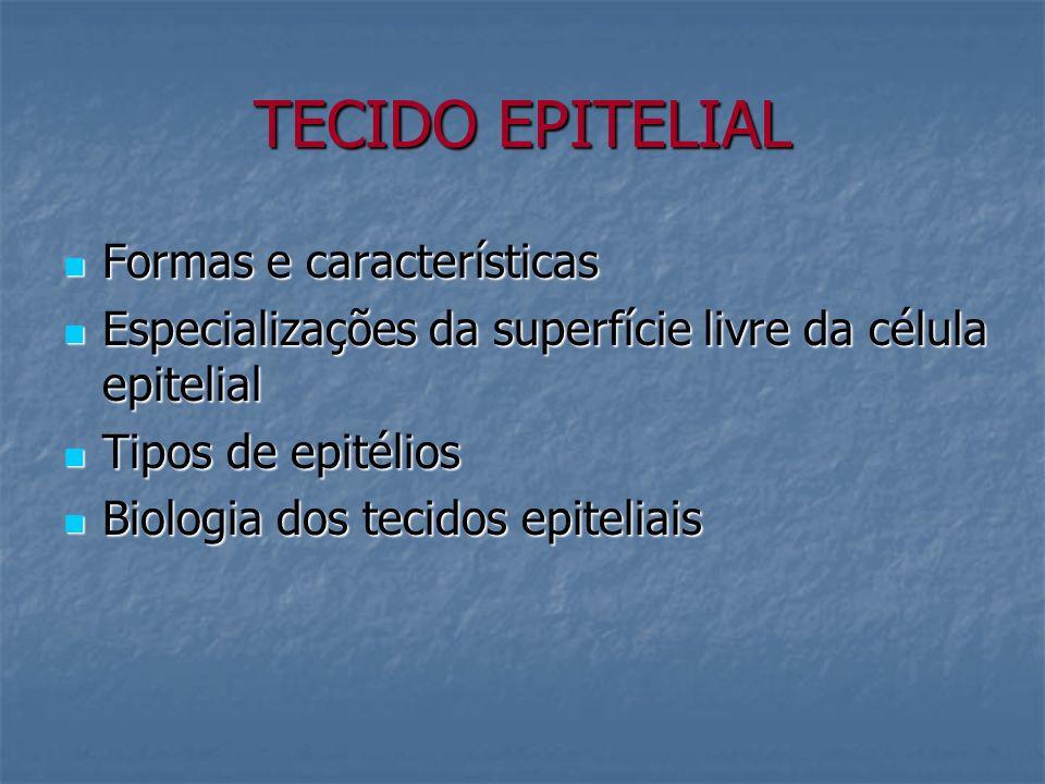 TECIDO EPITELIAL Formas e características