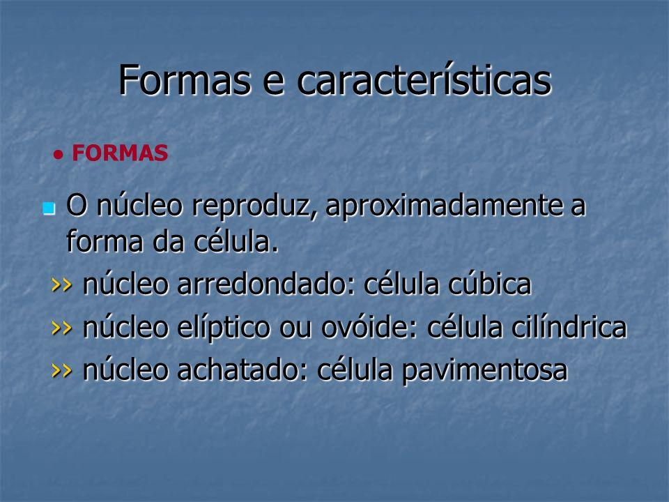 Formas e características