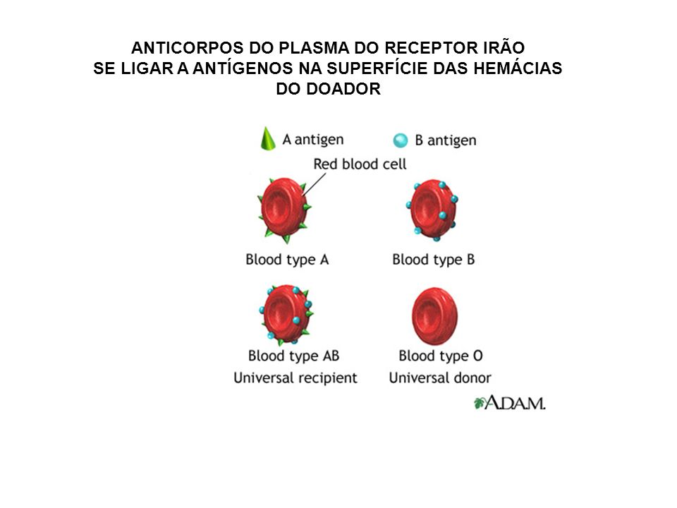 ANTICORPOS DO PLASMA DO RECEPTOR IRÃO