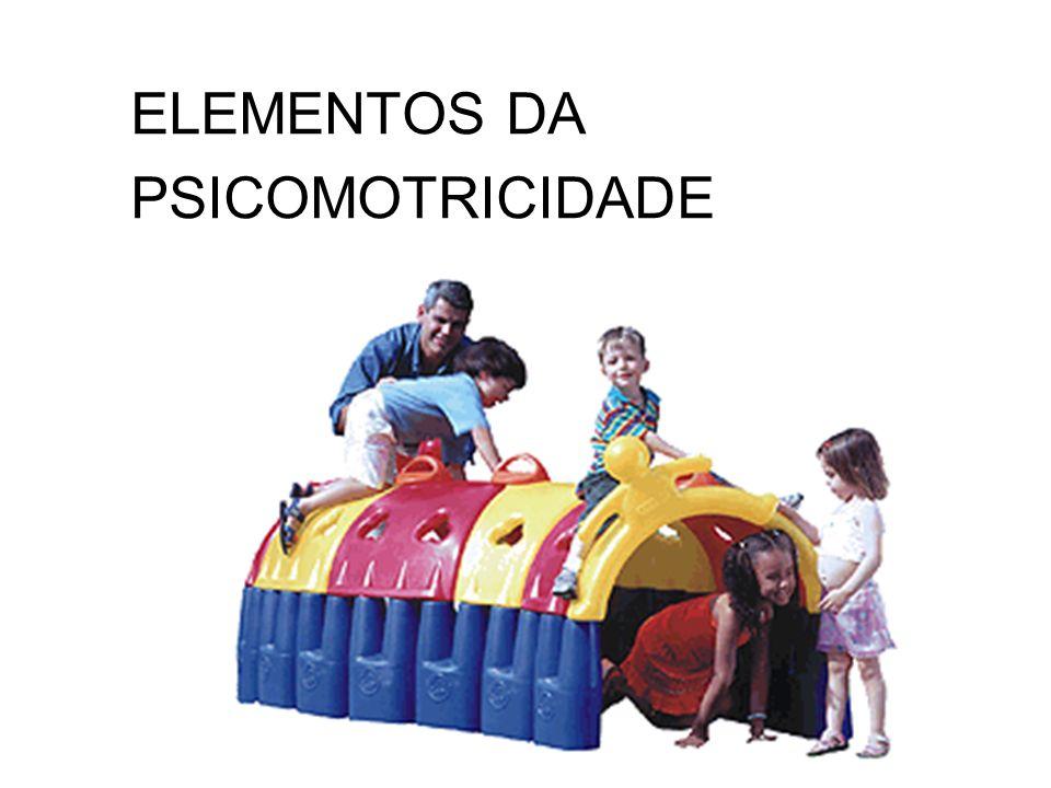 ELEMENTOS DA PSICOMOTRICIDADE