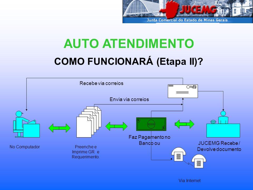 COMO FUNCIONARÁ (Etapa II)