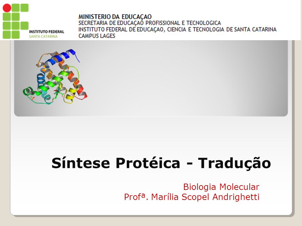 Síntese Protéica - Tradução