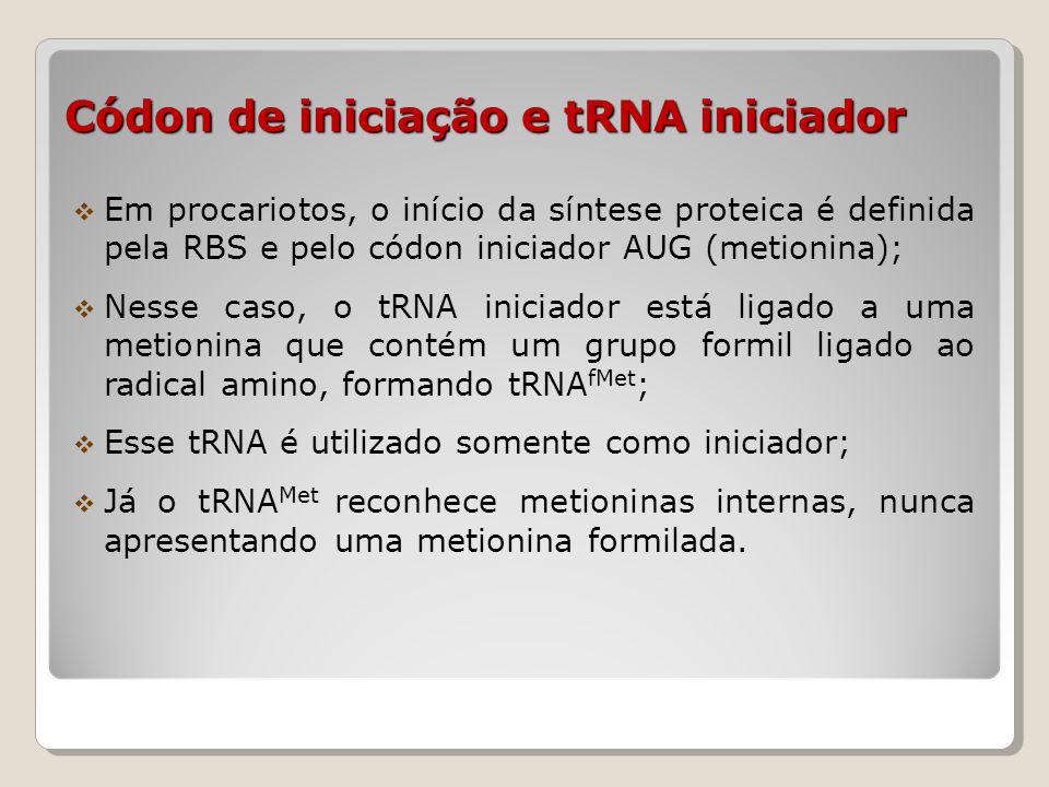 Códon de iniciação e tRNA iniciador